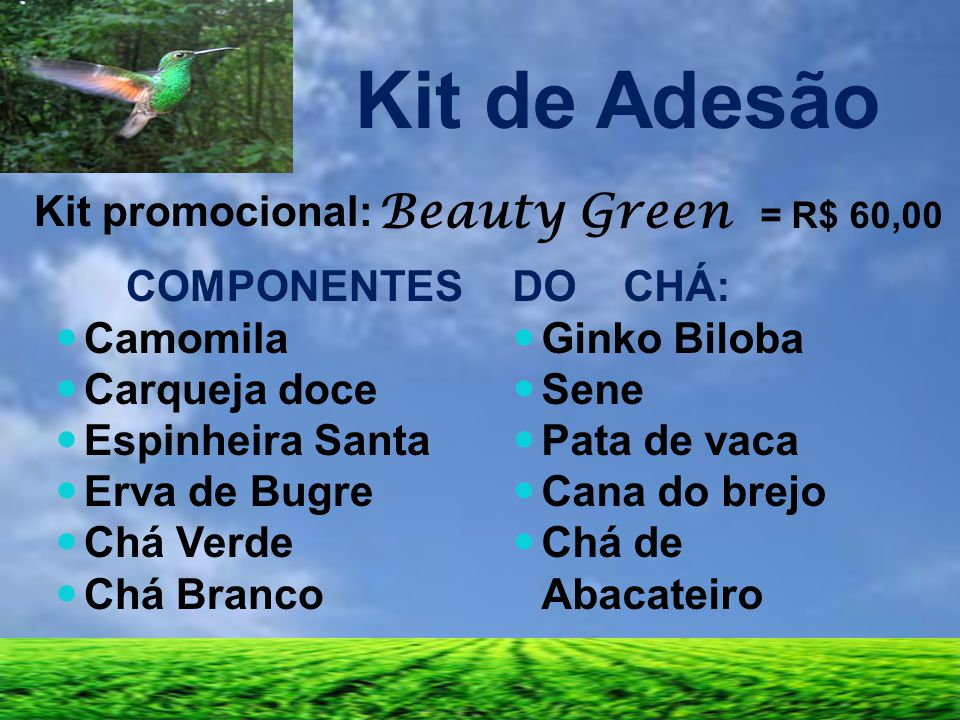 Kit de Adesão Beauty Green = R$ 60,00 Kit promocional: COMPONENTES