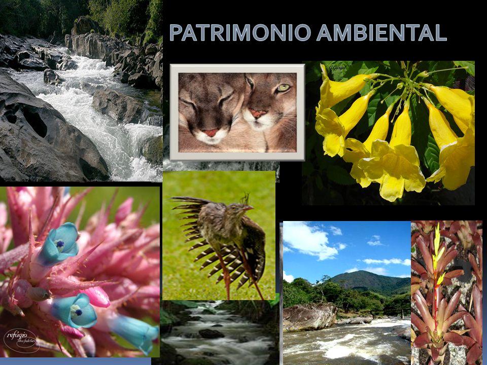 PATRIMONIO AMBIENTAL