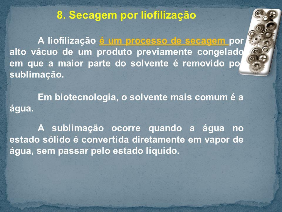 8. Secagem por liofilização