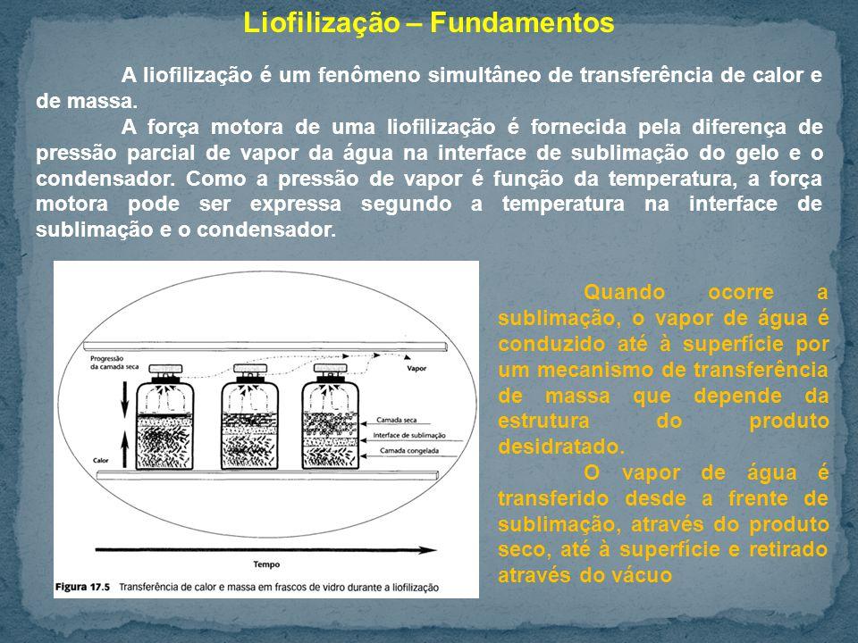 Liofilização – Fundamentos