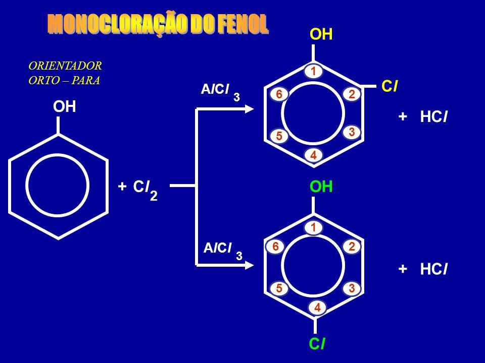MONOCLORAÇÃO DO FENOL OH Cl OH + HCl + Cl OH + HCl Cl AlCl 2 AlCl