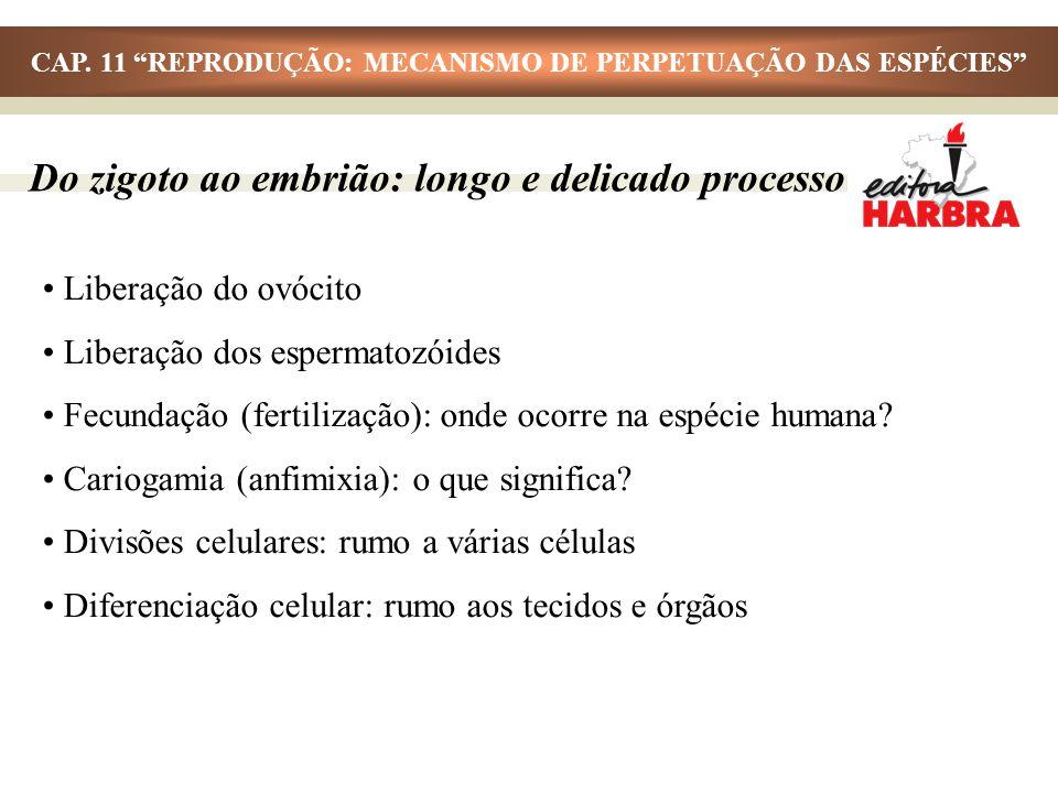 CAP. 11 REPRODUÇÃO: MECANISMO DE PERPETUAÇÃO DAS ESPÉCIES