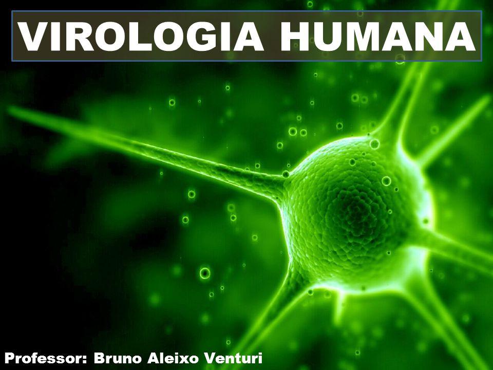 VIROLOGIA HUMANA Professor: Bruno Aleixo Venturi