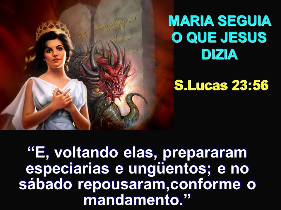 MARIA SEGUIA O QUE JESUS DIZIA