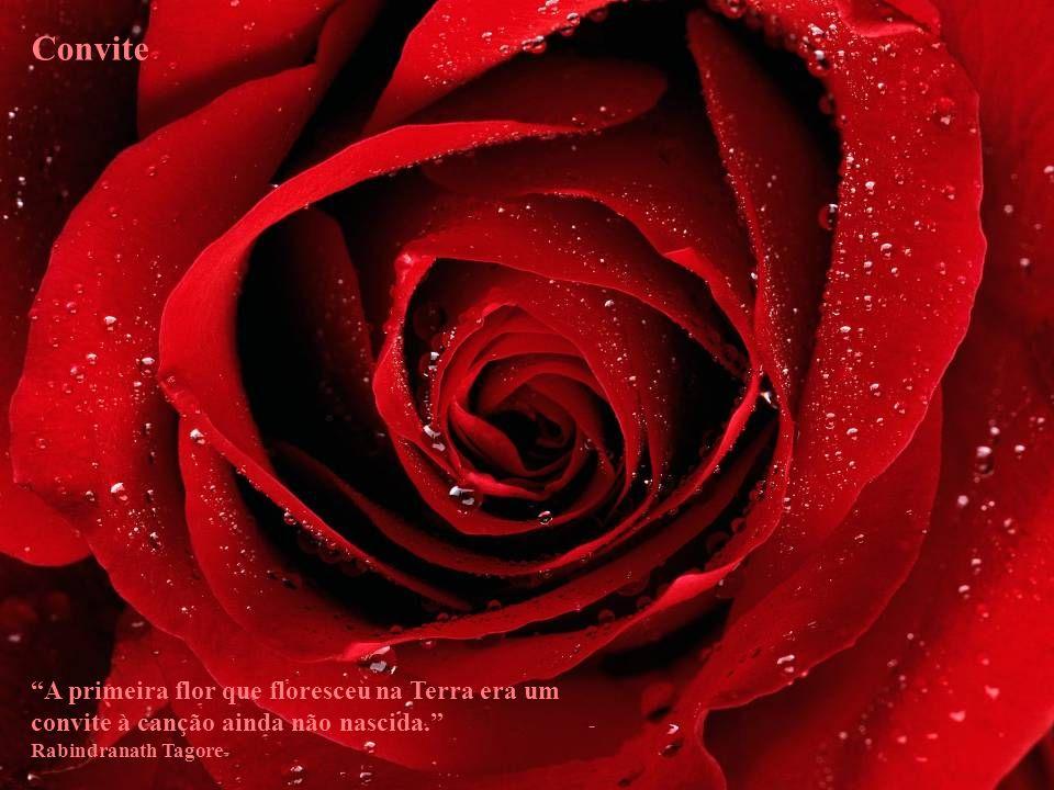 Convite A primeira flor que floresceu na Terra era um convite à canção ainda não nascida. -Rabindranath Tagore-