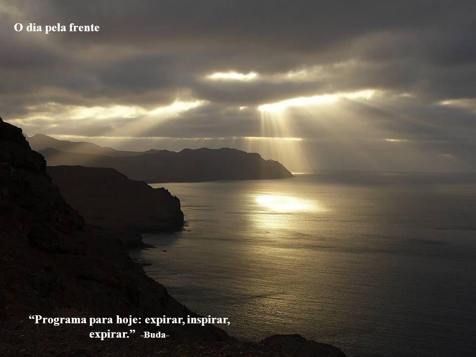 Programa para hoje: expirar, inspirar, expirar. -Buda-