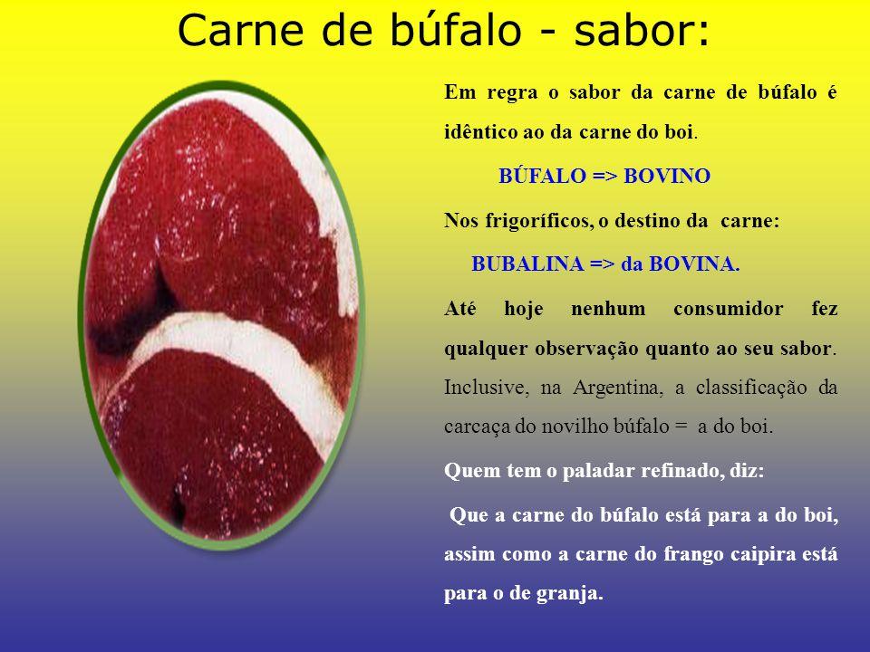 Carne de búfalo - sabor: