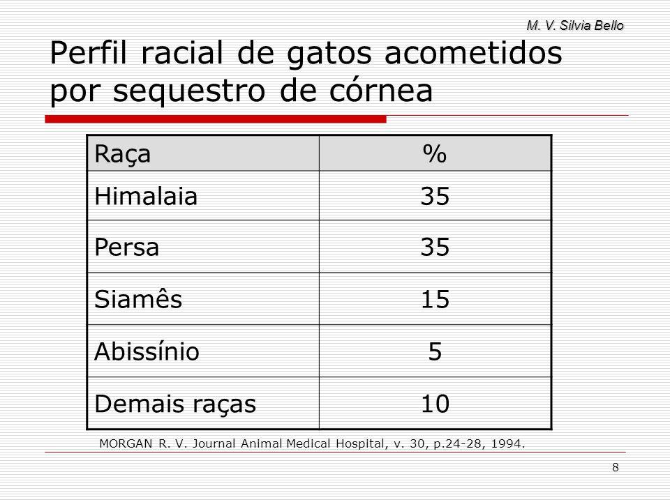 Perfil racial de gatos acometidos por sequestro de córnea