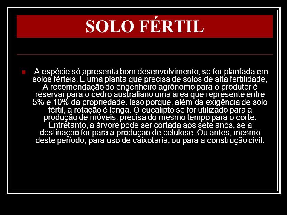 SOLO FÉRTIL