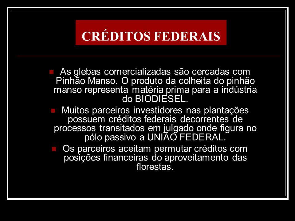 CRÉDITOS FEDERAIS