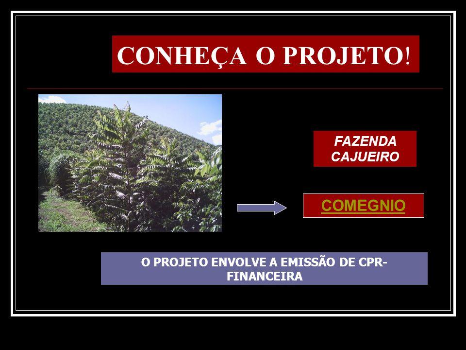 O PROJETO ENVOLVE A EMISSÃO DE CPR- FINANCEIRA