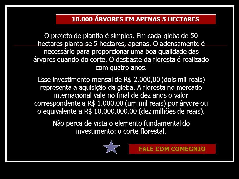 10.000 ÁRVORES EM APENAS 5 HECTARES