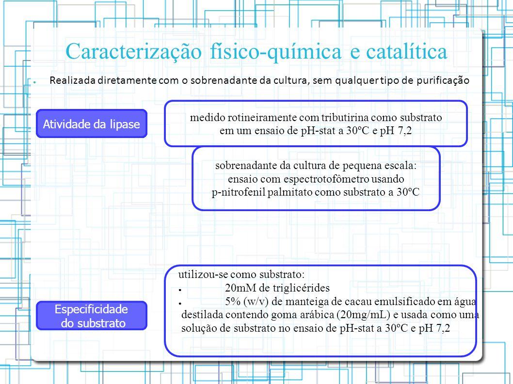 Caracterização físico-química e catalítica