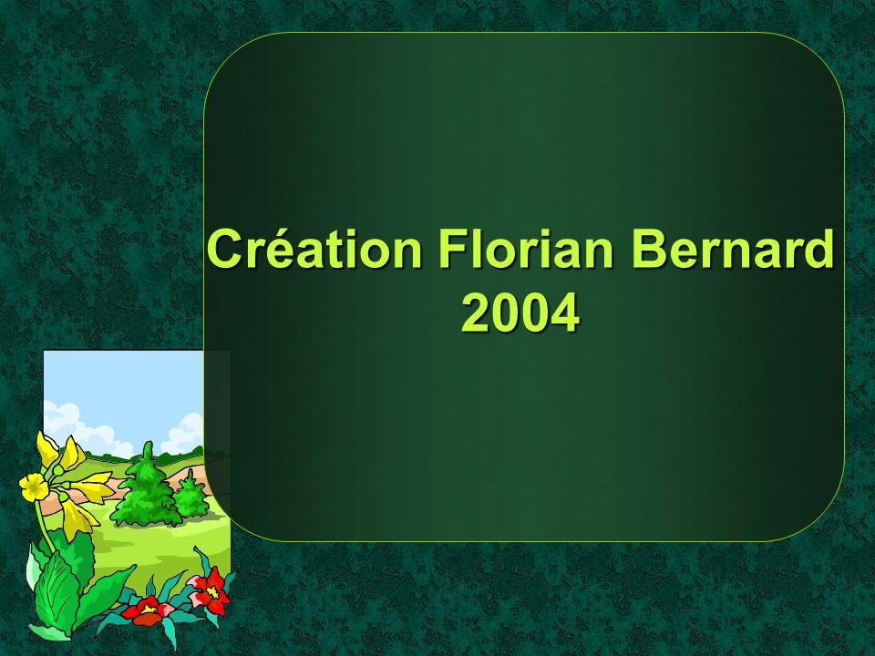 Création Florian Bernard 2004