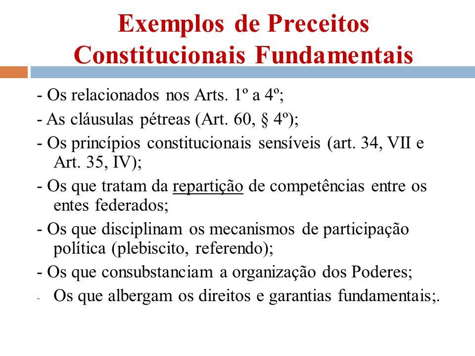 Exemplos de Preceitos Constitucionais Fundamentais