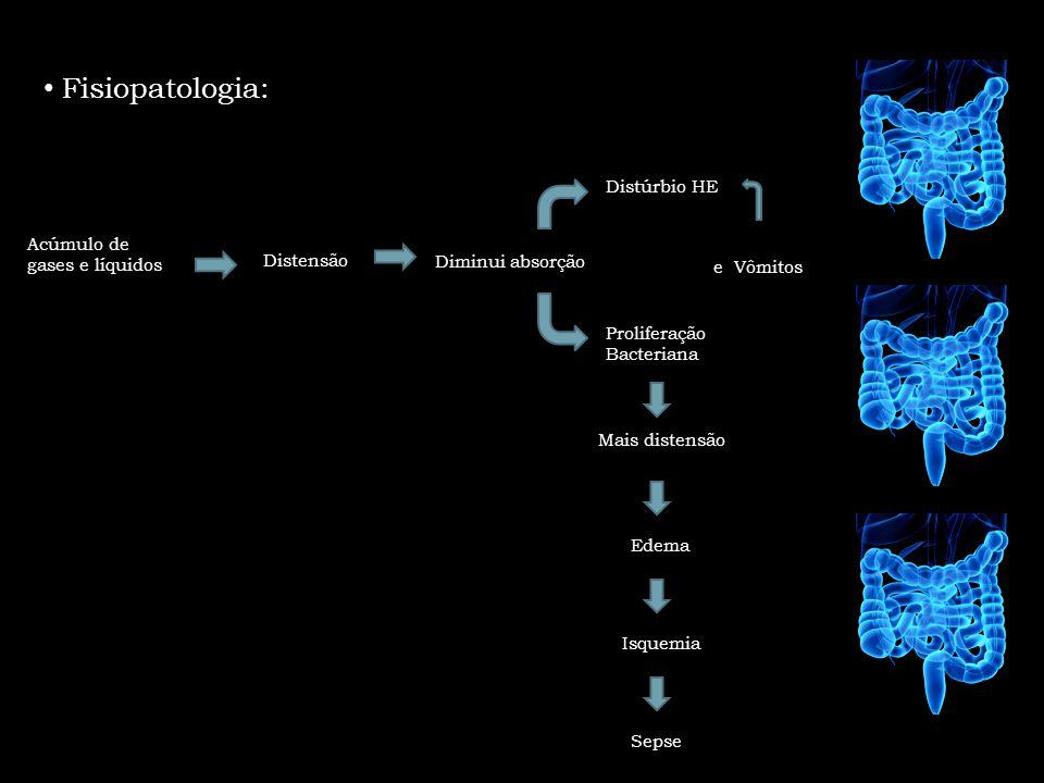 Fisiopatologia: Distúrbio HE Acúmulo de gases e líquidos Distensão