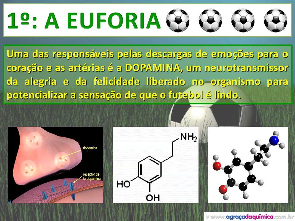 1º: A EUFORIA