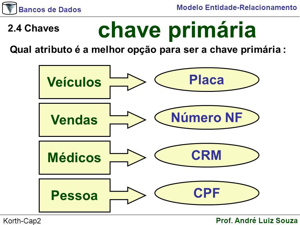 chave primária Veículos Placa Vendas Número NF Médicos CRM Pessoa CPF