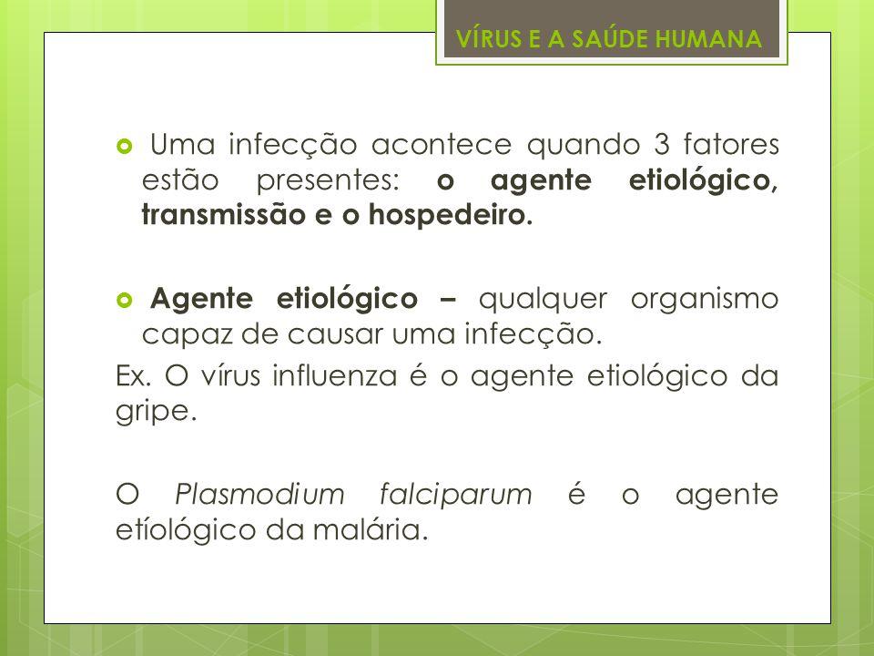 Agente etiológico – qualquer organismo capaz de causar uma infecção.