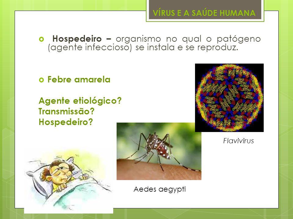 VÍRUS E A SAÚDE HUMANA Hospedeiro – organismo no qual o patógeno (agente infeccioso) se instala e se reproduz.
