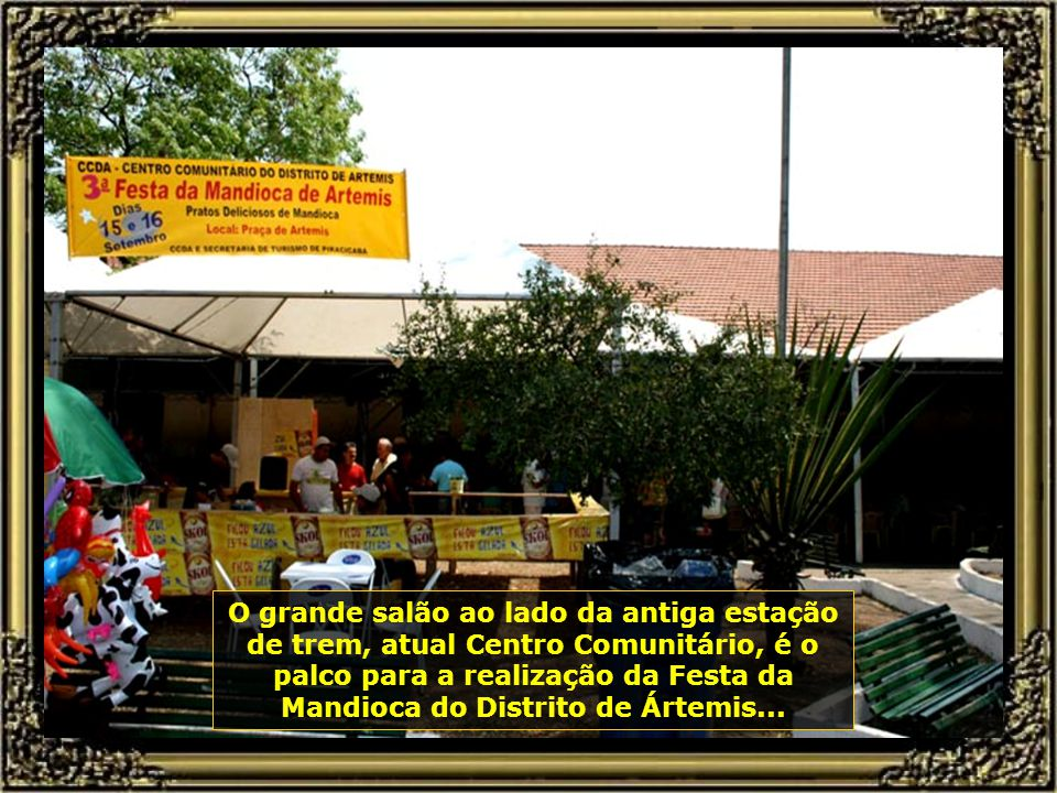 IMG_5534 - PIRACICABA - FESTA DA MANDIOCA DE ARTEMIS-670