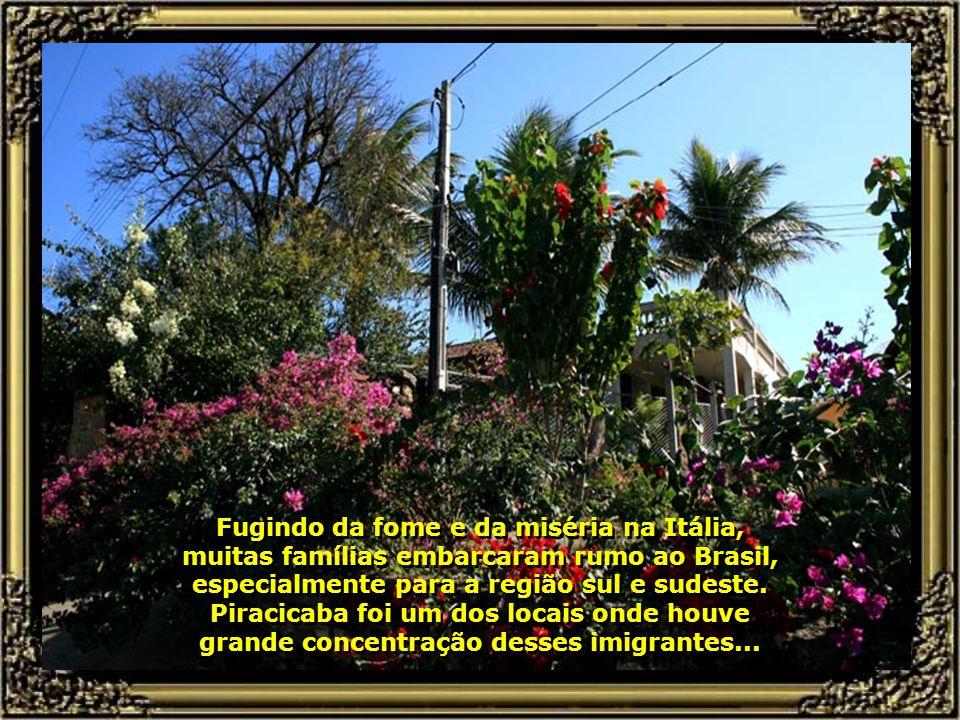IMG_4618 - PIRACICABA - FESTA DA POLENTA EM SANTA OLÍMPIA-670