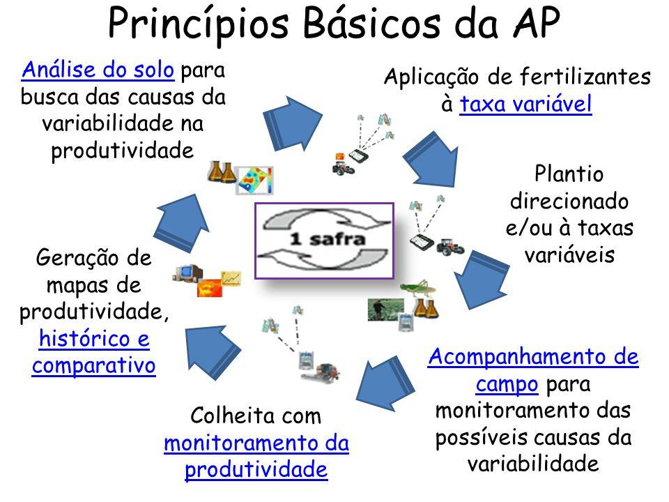 Princípios Básicos da AP