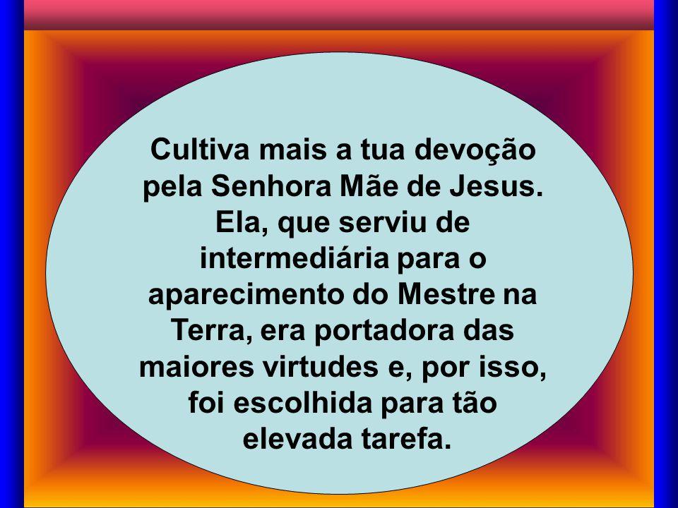 Cultiva mais a tua devoção pela Senhora Mãe de Jesus