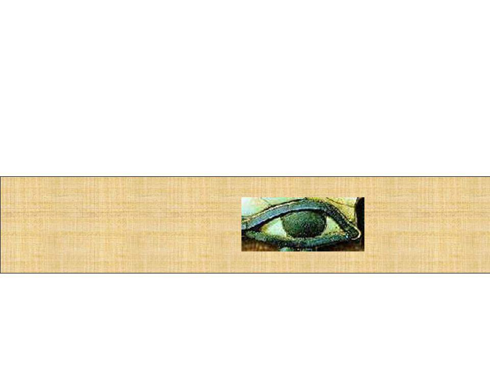 Bastam olhos que saibam ler para ressuscitar todo o conhecimento.
