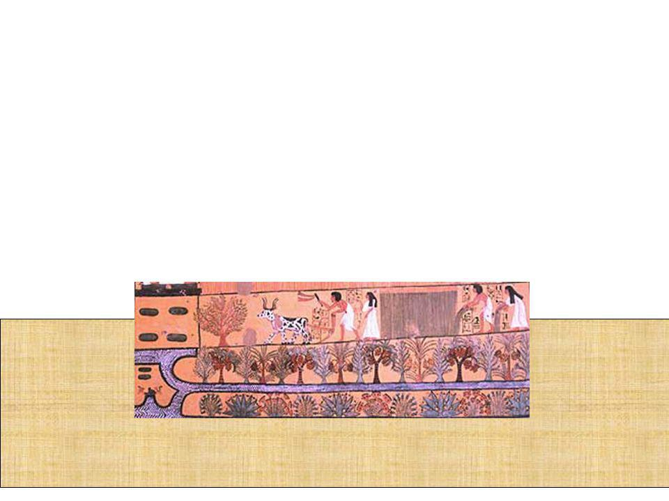 Na área da ciência., os egípcios não tiveram interesse pelas questões filosóficas e abstratas, como a construção de templos e pirâmides, a cura de doenças, saber a duração das estações agrícolas, um método eficiente de contabilidade comercial e etc.