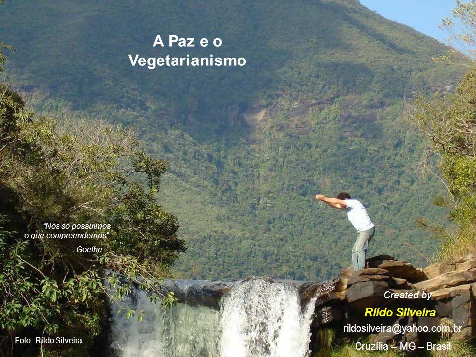 A Paz e o Vegetarianismo