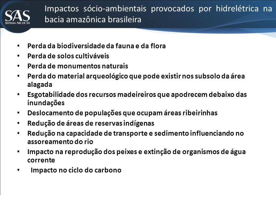 Impactos sócio-ambientais provocados por hidrelétrica na bacia amazônica brasileira