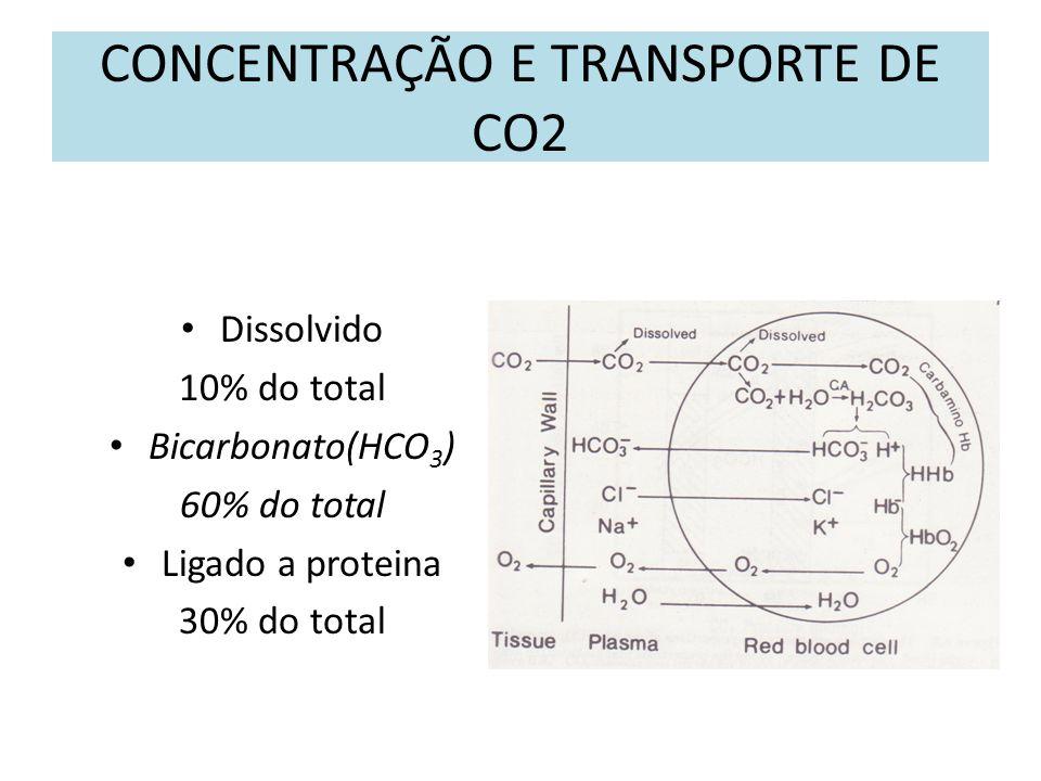 CONCENTRAÇÃO E TRANSPORTE DE CO2