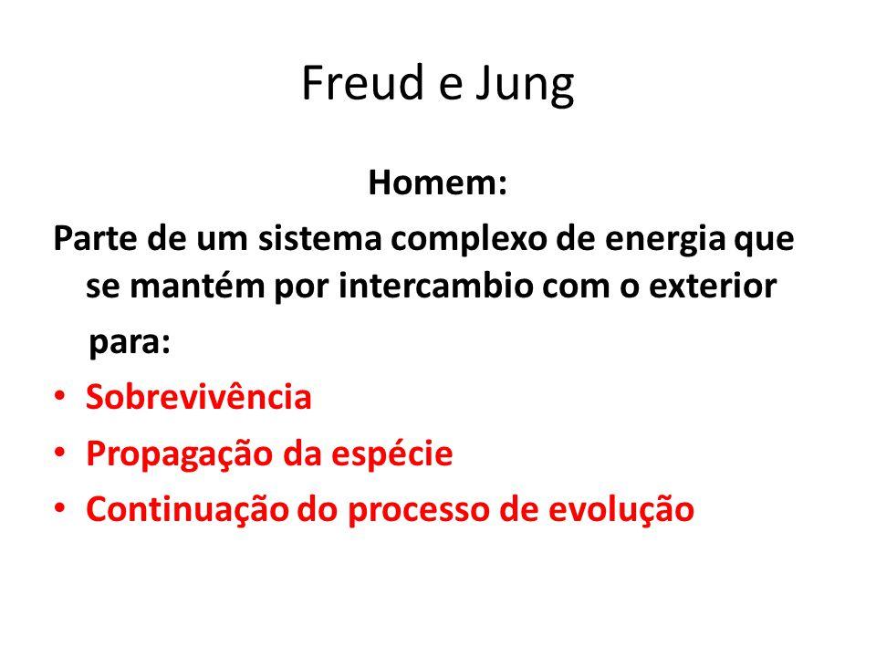 Freud e Jung Homem: Parte de um sistema complexo de energia que se mantém por intercambio com o exterior.