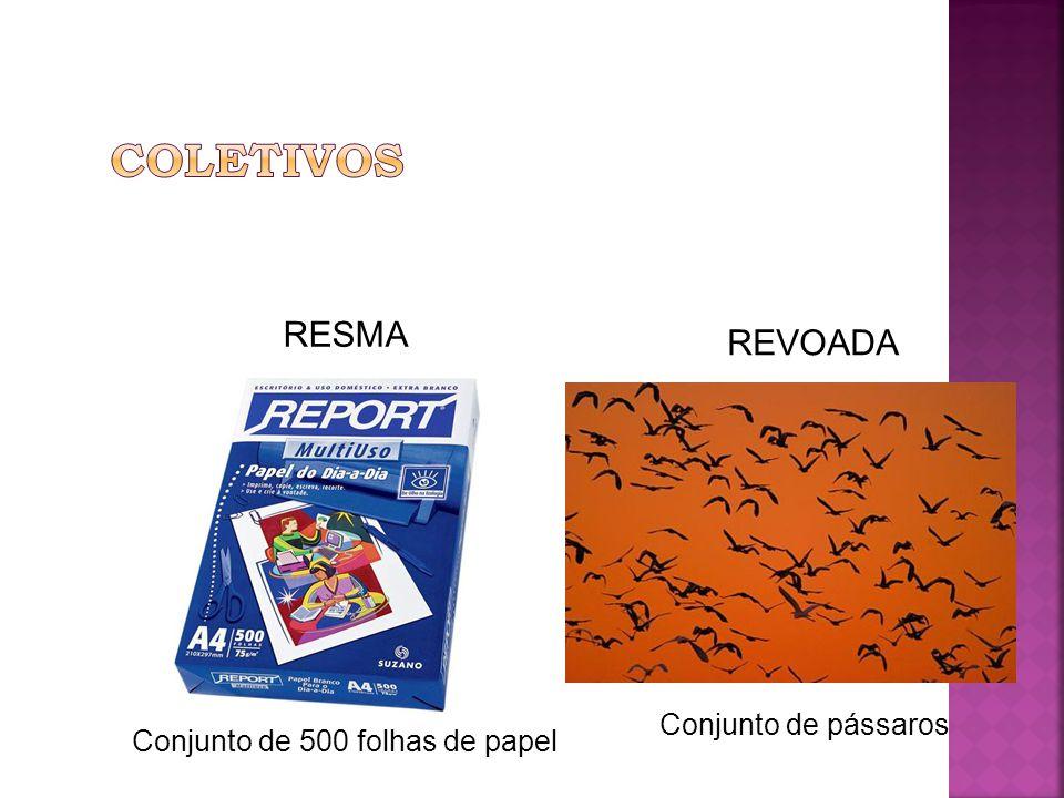 COLETIVOS RESMA REVOADA Conjunto de pássaros