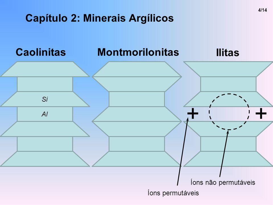 + + Capítulo 2: Minerais Argílicos Caolinitas Montmorilonitas Ilitas