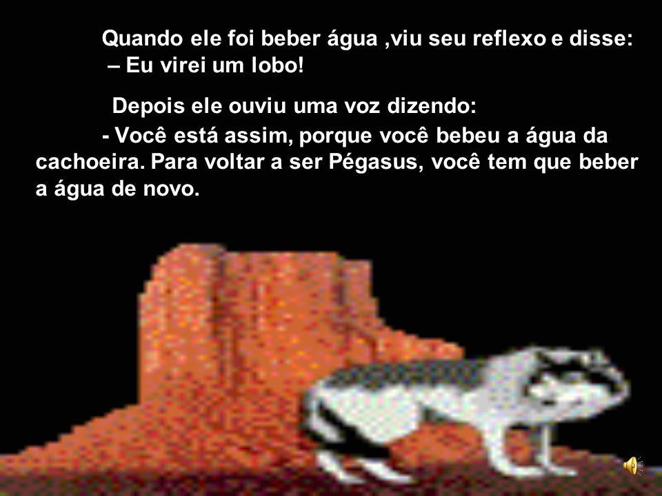 Quando ele foi beber água ,viu seu reflexo e disse: – Eu virei um lobo.