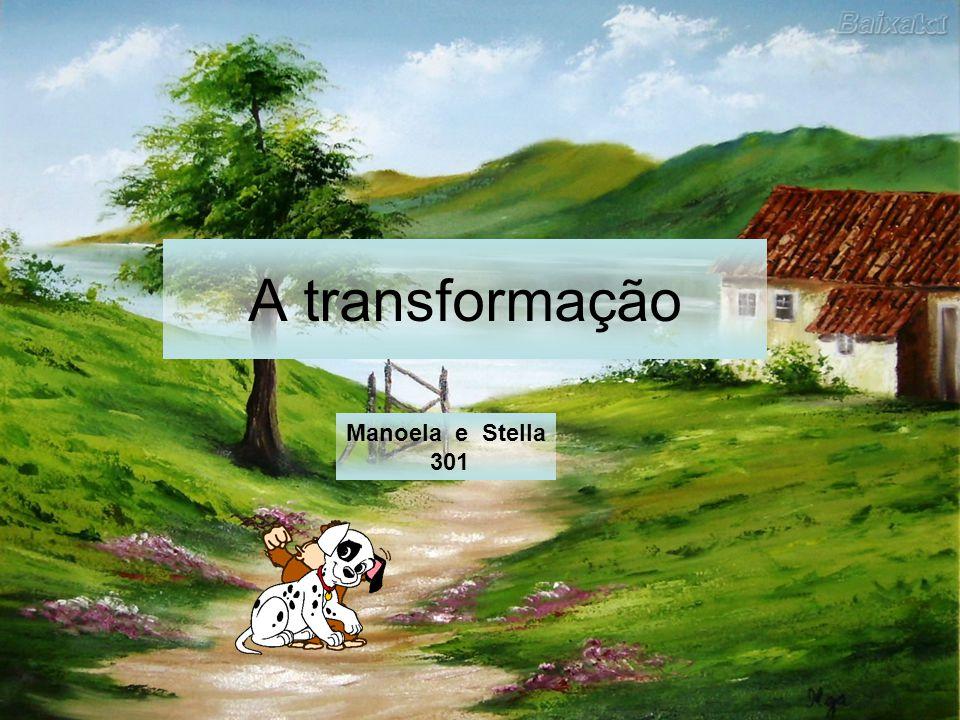 A transformação Manoela e Stella 301