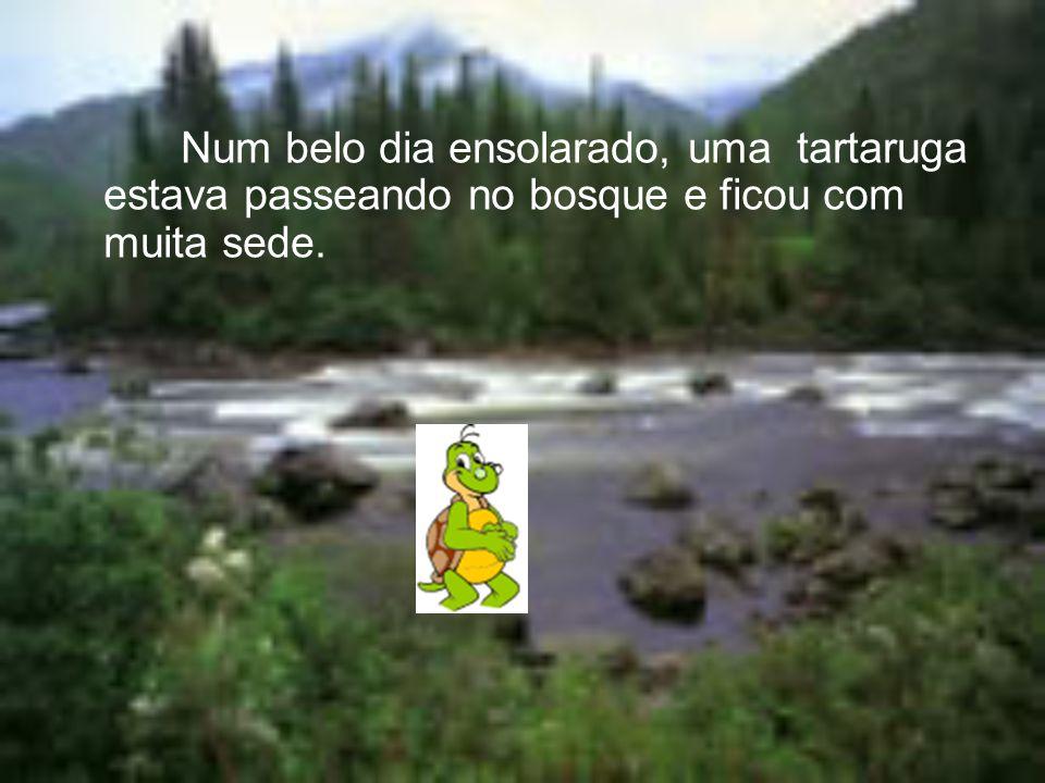 Num belo dia ensolarado, uma tartaruga estava passeando no bosque e ficou com muita sede.