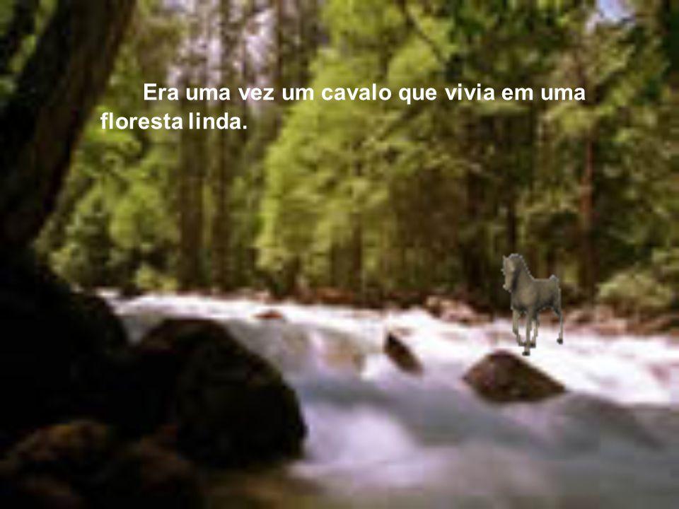 Era uma vez um cavalo que vivia em uma floresta linda.