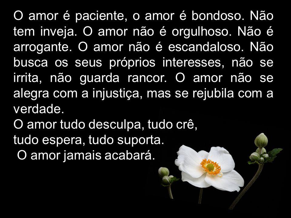 O amor é paciente, o amor é bondoso. Não tem inveja