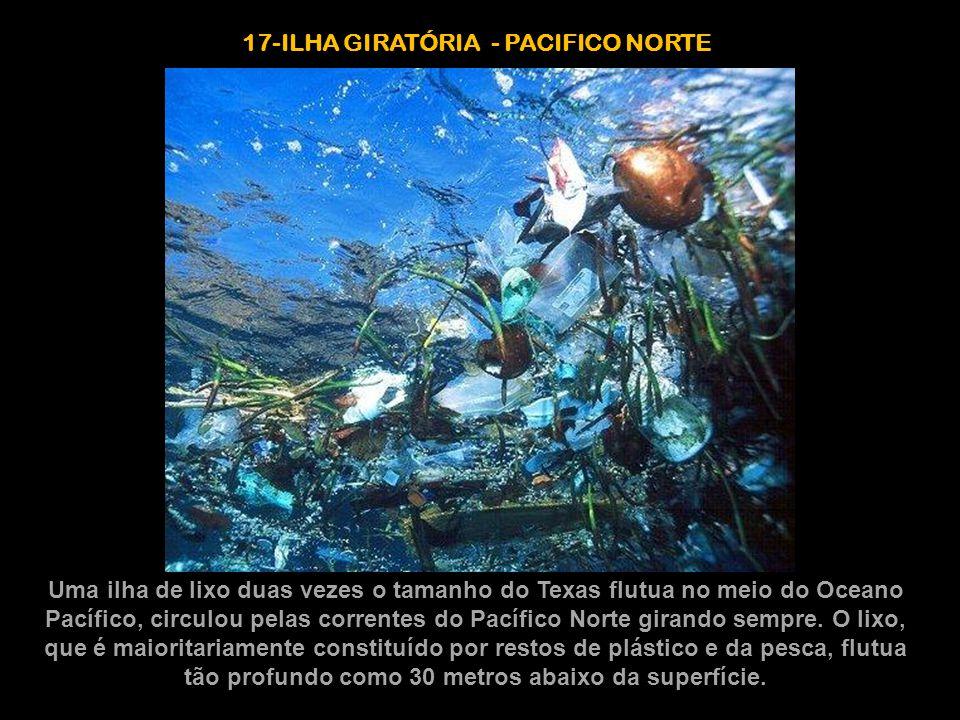 17-ILHA GIRATÓRIA - PACIFICO NORTE