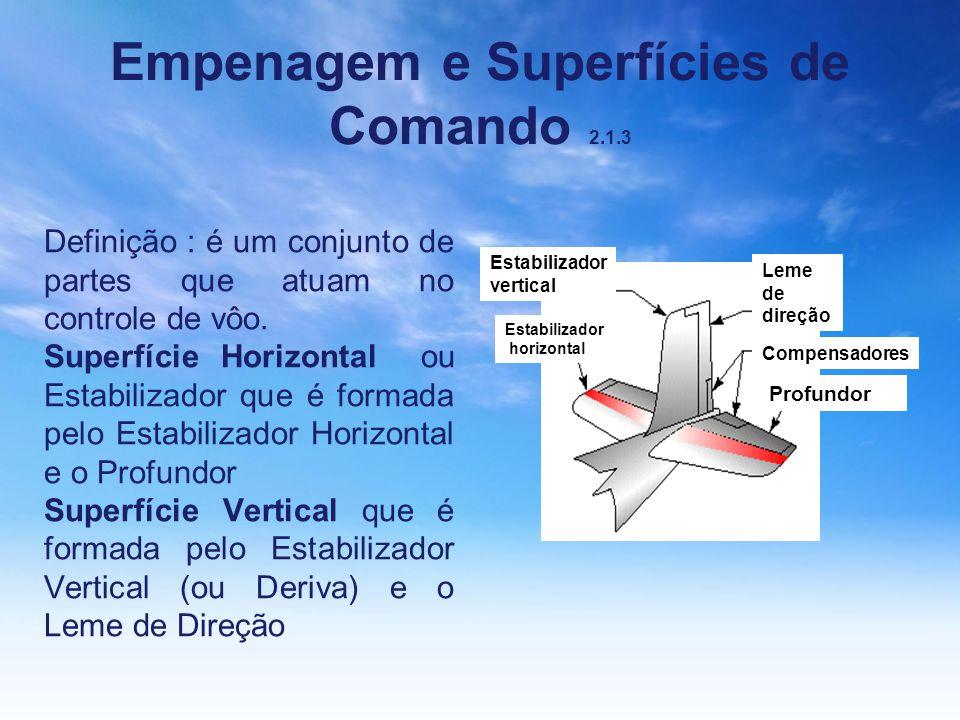 Empenagem e Superfícies de Comando 2.1.3