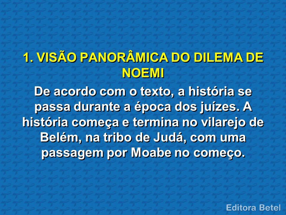 1. VISÃO PANORÂMICA DO DILEMA DE NOEMI