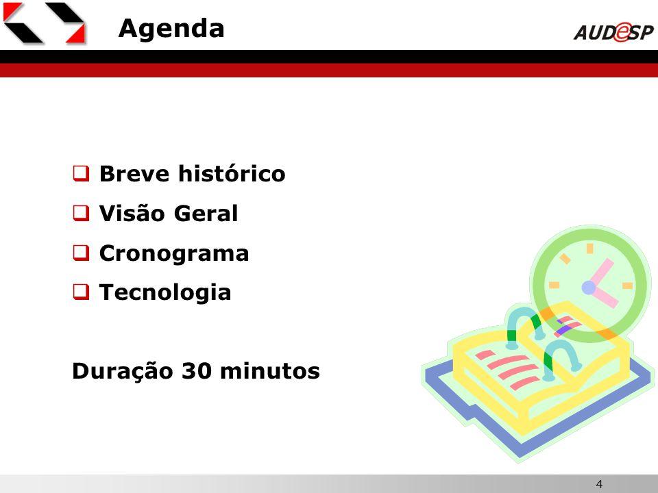 Agenda Breve histórico Visão Geral Cronograma Tecnologia
