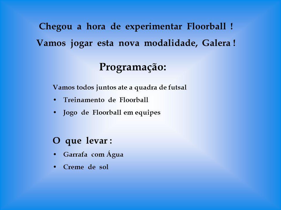 Programação: Chegou a hora de experimentar Floorball !