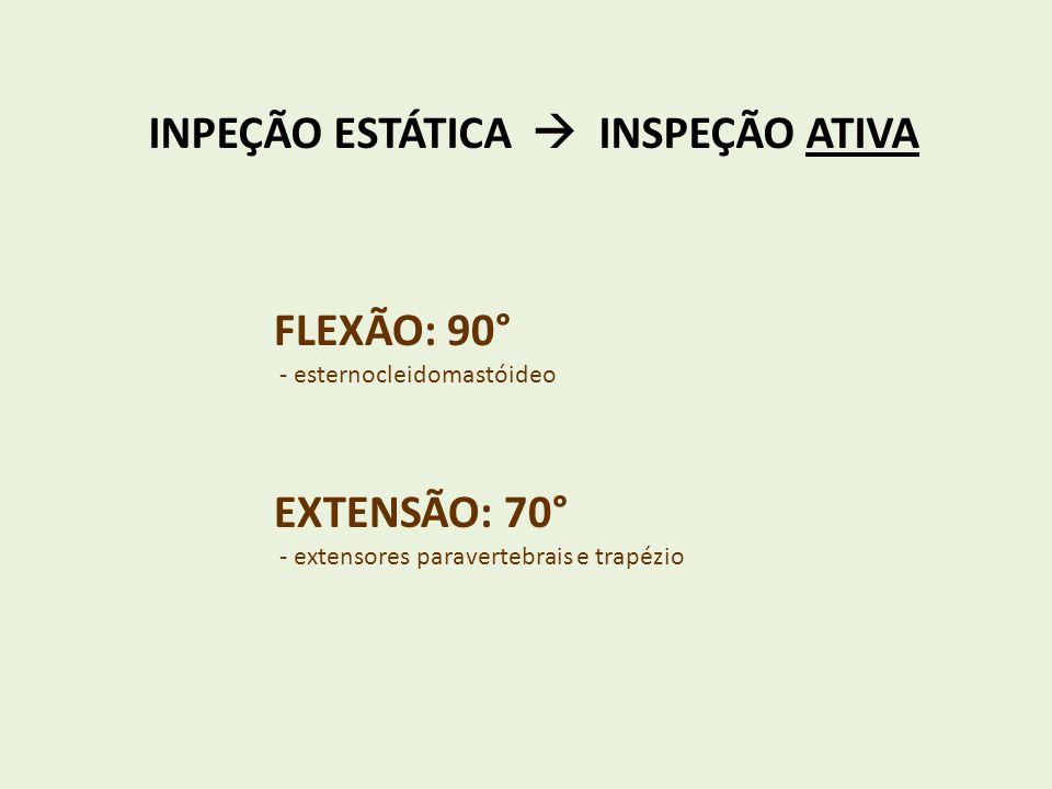 INPEÇÃO ESTÁTICA  INSPEÇÃO ATIVA