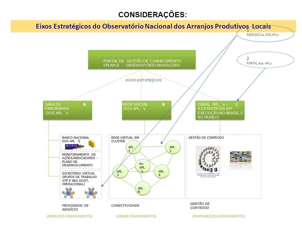 CONSIDERAÇÕES: Eixos Estratégicos do Observatório Nacional dos Arranjos Produtivos Locais. 1. REDE SOCIAL DOS APLs.