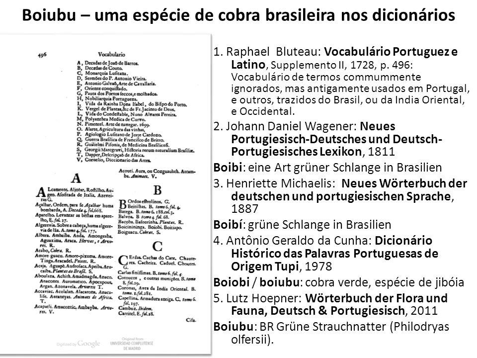 Boiubu – uma espécie de cobra brasileira nos dicionários