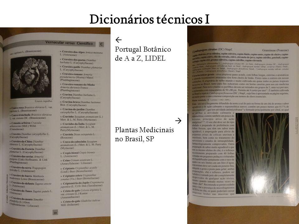 Dicionários técnicos I